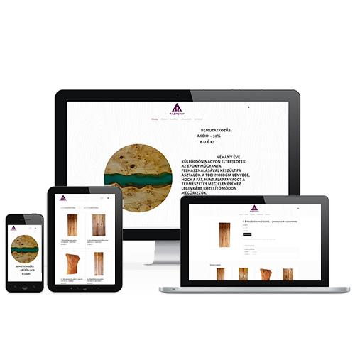 Faepoxy weboldal referencia